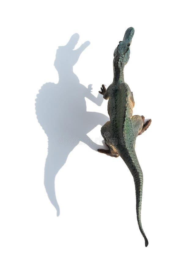 Jouet gris de spinosaurus de vue supérieure sur le blanc avec l'ombre images libres de droits