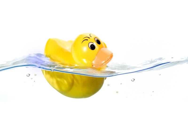 Jouet mignon dans l'eau photo libre de droits