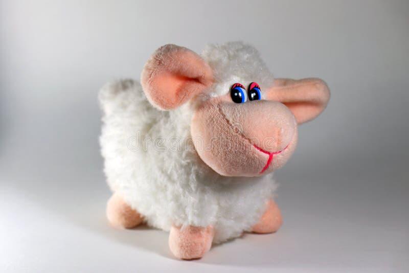 Jouet mignon de moutons sur un fond blanc images libres de droits
