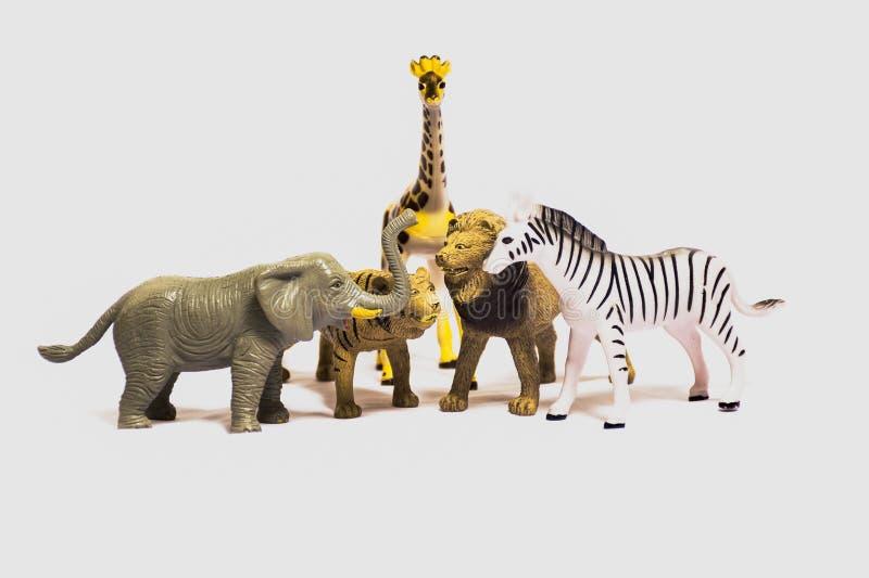 Jouets d'animaux pour des bébés d'isolement sur le fond blanc photos libres de droits