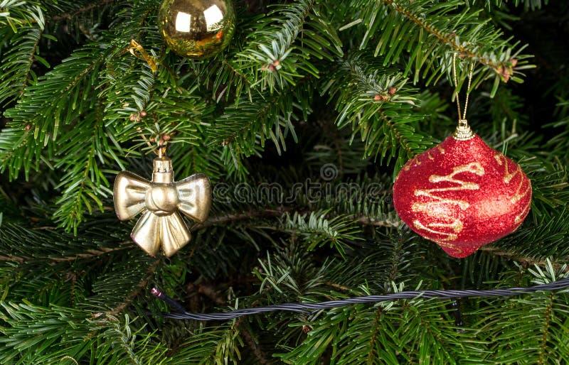 Jouets de Noël sur la branche de pin photo stock