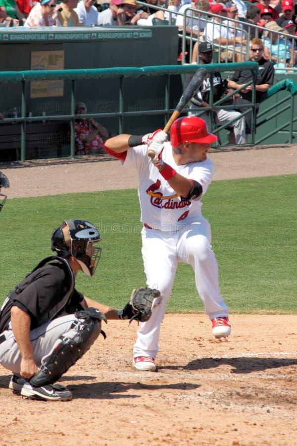 Joueur de cardinaux de MLB St Louis photo stock