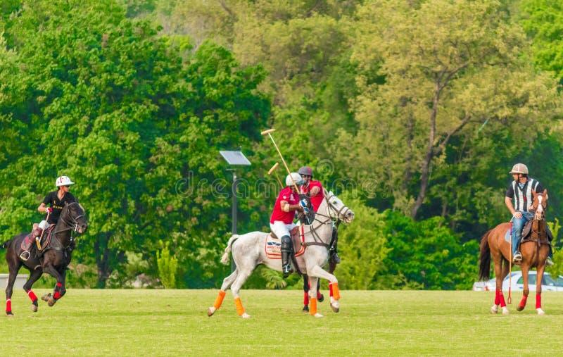 Joueurs dans l'action pendant un match de polo photo stock