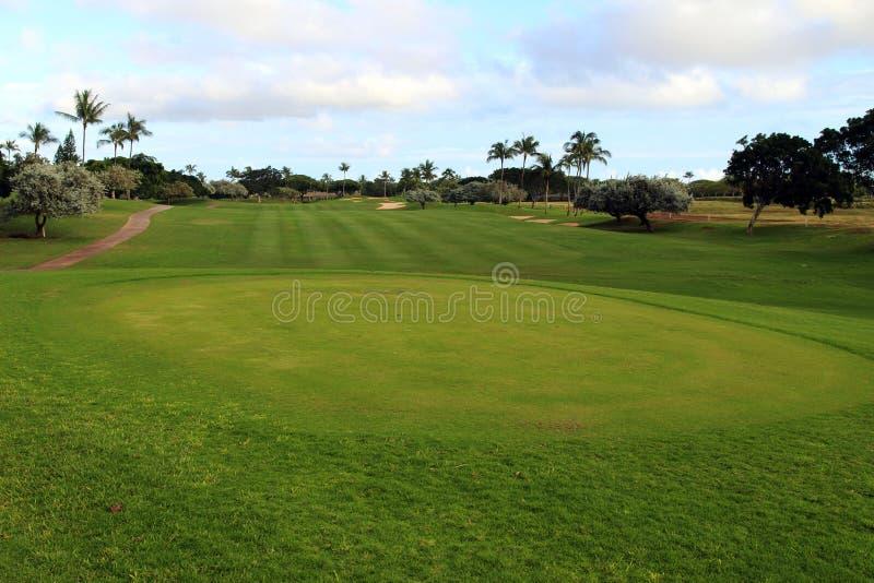 Download Jouez au golf field image stock. Image du pôle, hawaï - 87701423
