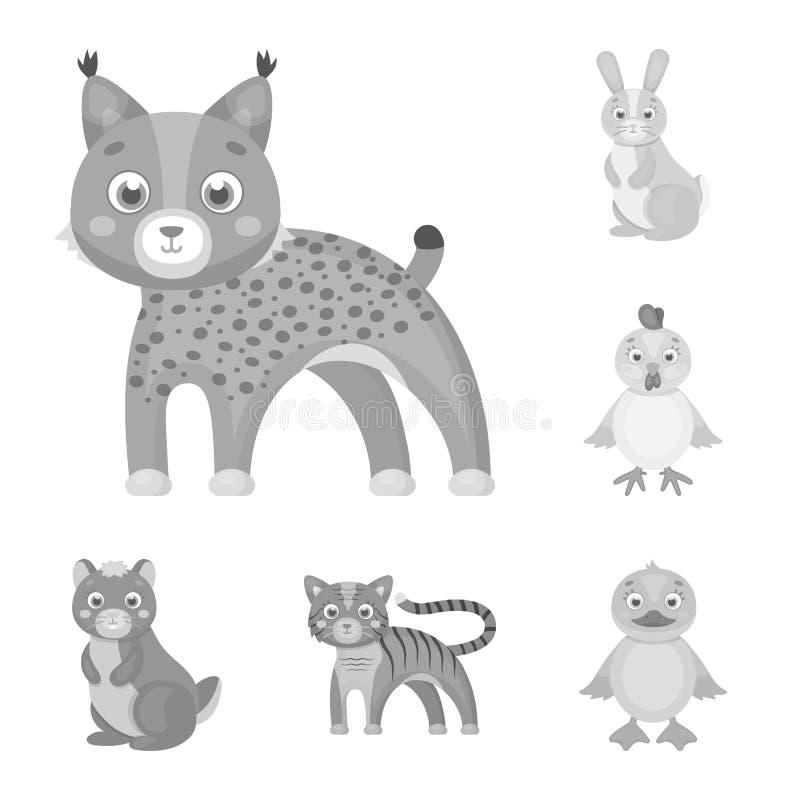 Jouez les icônes monochromes d'animaux dans la collection d'ensemble pour la conception L'oiseau, le prédateur et l'herbivore dir illustration de vecteur
