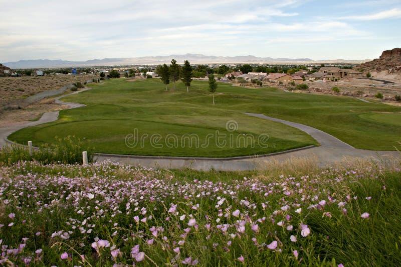 Jouons au golf photographie stock