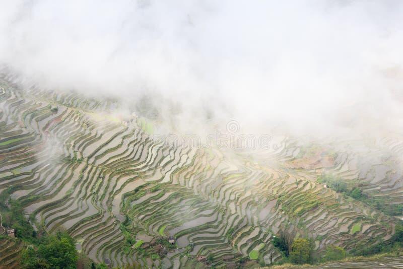 Jour brumeux au village de Bada dans des terrasses de riz de Yuanyang dans Yunnan images stock
