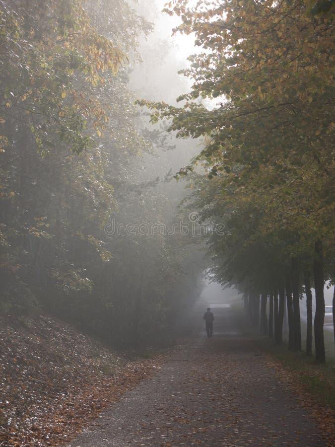 Jour chaud et brillant d'automne image stock