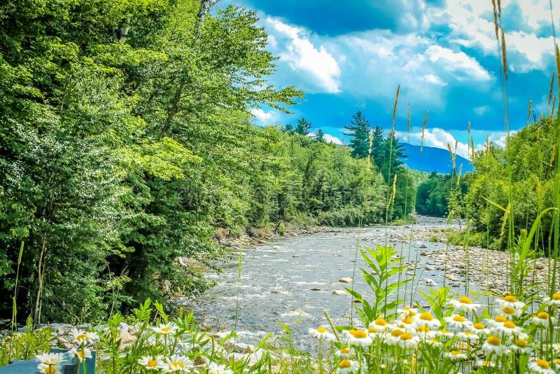 Jour d'été dans les montagnes photographie stock