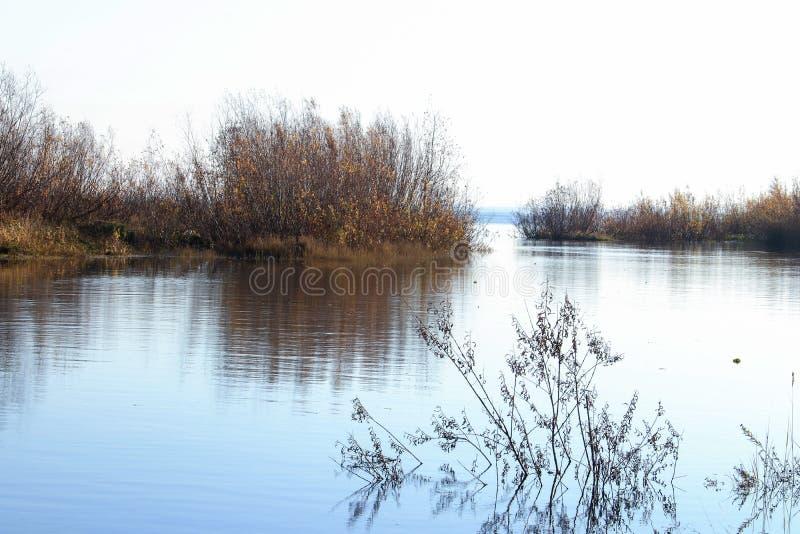 Jour d'automne dans Arkhangelsk Île Krasnoflotsky La réflexion dans l'eau photo libre de droits