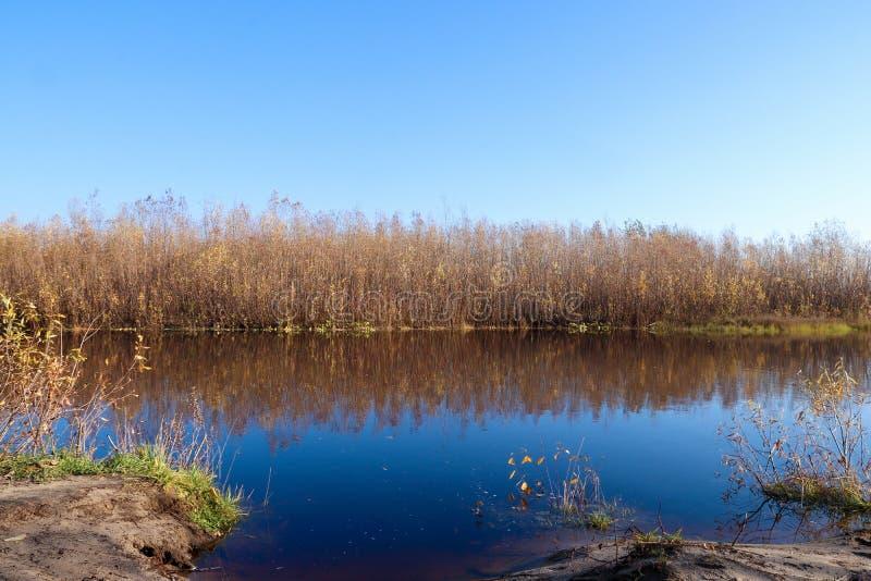 Jour d'automne dans Arkhangelsk Île Krasnoflotsky La réflexion dans l'eau photo stock