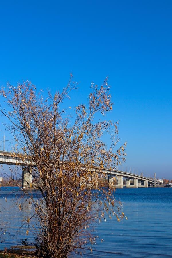 Jour d'automne dans Arkhangelsk Vue de la rivière pont du nord en Dvina et en automobile dans Arkhangelsk image libre de droits