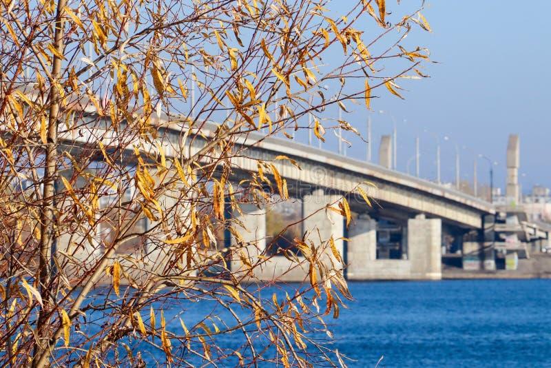 Jour d'automne dans Arkhangelsk Vue de la rivière pont du nord en Dvina et en automobile dans Arkhangelsk photos libres de droits