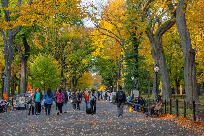 Jour d'automne sur le mail images libres de droits