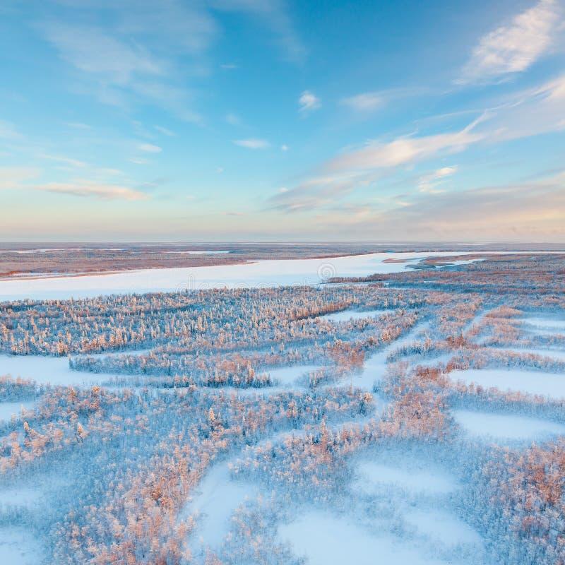 Jour d'hiver court de toundra congelée, vue supérieure photo stock
