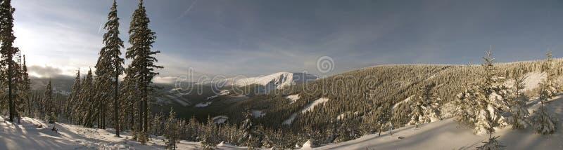 Jour d'hiver dans les montagnes photos libres de droits