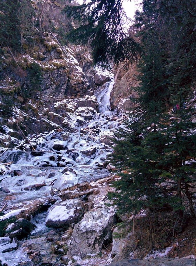 Jour d'hiver, rivière dans les montagnes photographie stock