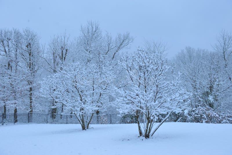Jour d'hiver tranquille photos stock