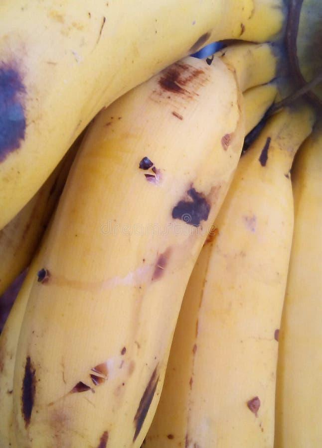 Jour de Banana Republic images libres de droits