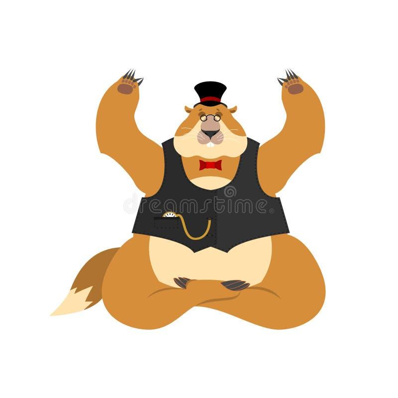 Jour de Groundhog Groundhog dans le yoga de chapeau Yogi de marmotte d'Amérique d'isolement M illustration de vecteur
