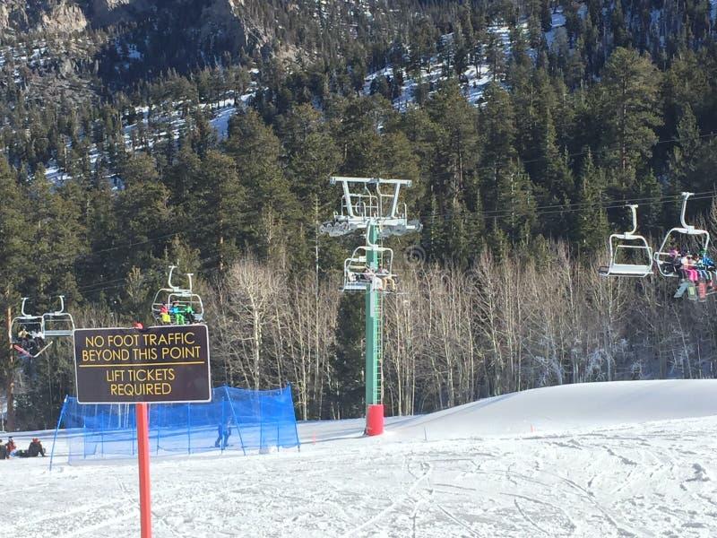 Jour de Milou dans les montagnes photos stock