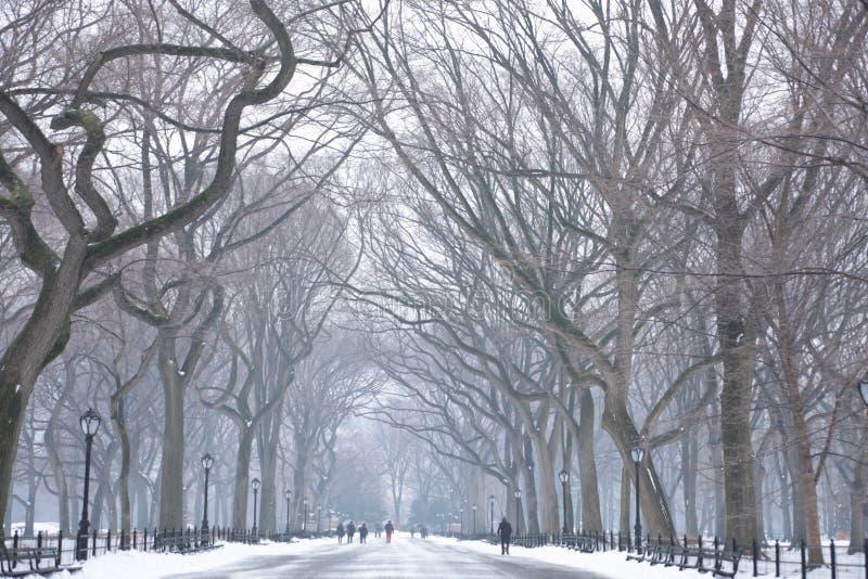 Jour de Milou dans NYC photo libre de droits