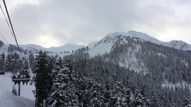Jour de Milou dans Whistler images stock