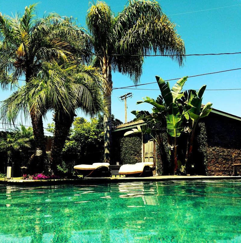 Jour de piscine photo libre de droits