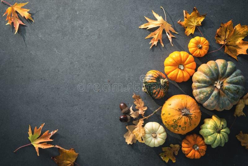 Jour de thanksgiving ou fond automnal saisonnier avec les potirons a photographie stock libre de droits