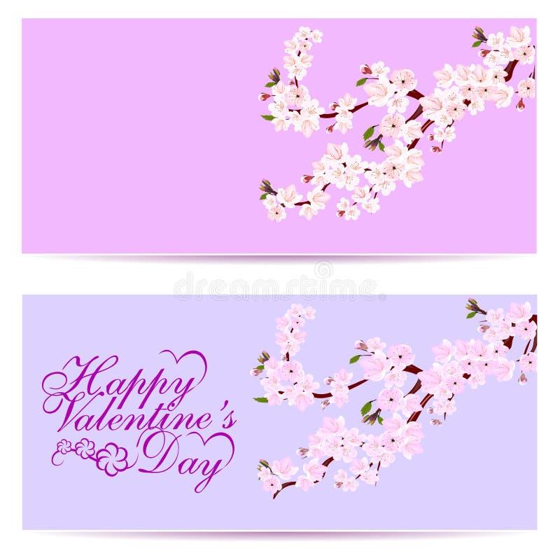 Jour de Valentine s Sakura - deux cartes de visite professionnelle de visite Fleurs décoratives de cerise avec des bourgeons sur  illustration libre de droits