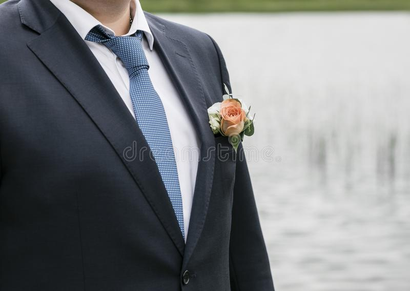 Jour du mariage Jeune marié sur la nature été photographie stock libre de droits
