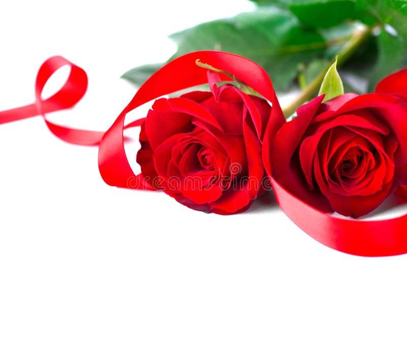 Jour du `s de Valentine roses rouges d'isolement blanches images libres de droits