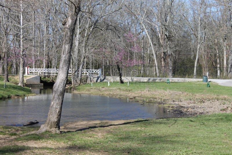Jour ensoleillé au jour de perfet de rivière à être au parc photo libre de droits