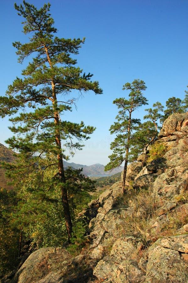 Jour ensoleillé d'été en montagnes image libre de droits
