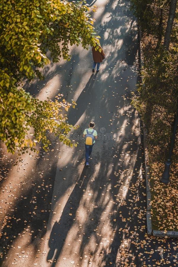 Jour ensoleillé d'automne, personnes de marche, allée de parc pointillée avec les feuilles tombées, feuillage jaune des arbres, v photographie stock libre de droits