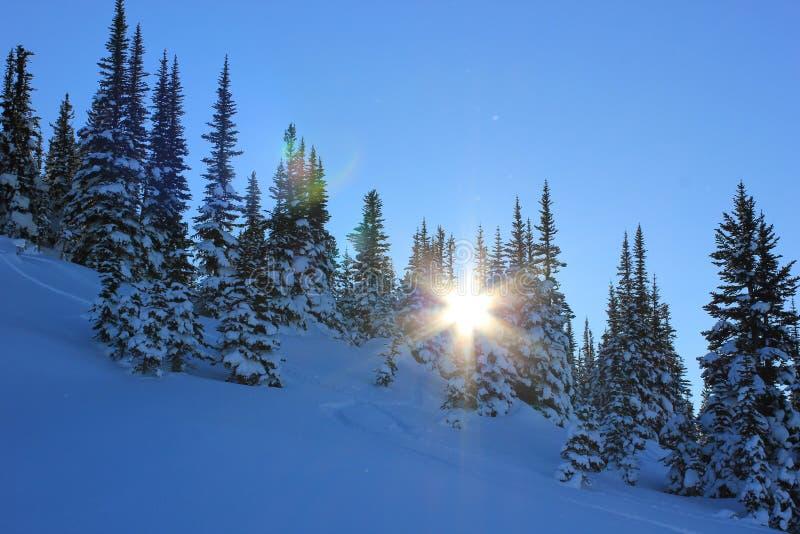 Jour ensoleill? dans un winterwonderland photos stock