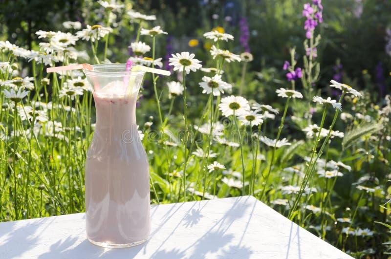 Jour ensoleill? dans le pr? Petit déjeuner savoureux dans le jardin d'agrément Bouteille complètement de boisson rose avec des fr image stock