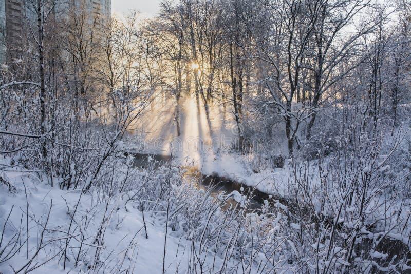 Jour givré de janvier image stock