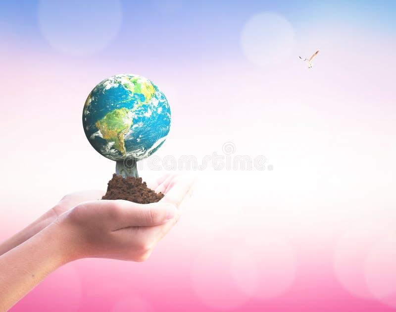 Jour international de concept de coopératives : main tenant la terre sur le fond brouillé de nature illustration stock