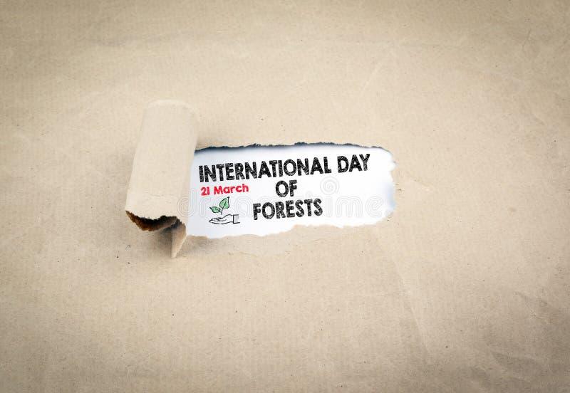 Jour international des forêts, le 21 mars Vieux fond de papier cassé images libres de droits