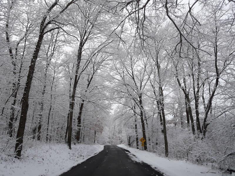 Jour neigeux de route arrière image libre de droits