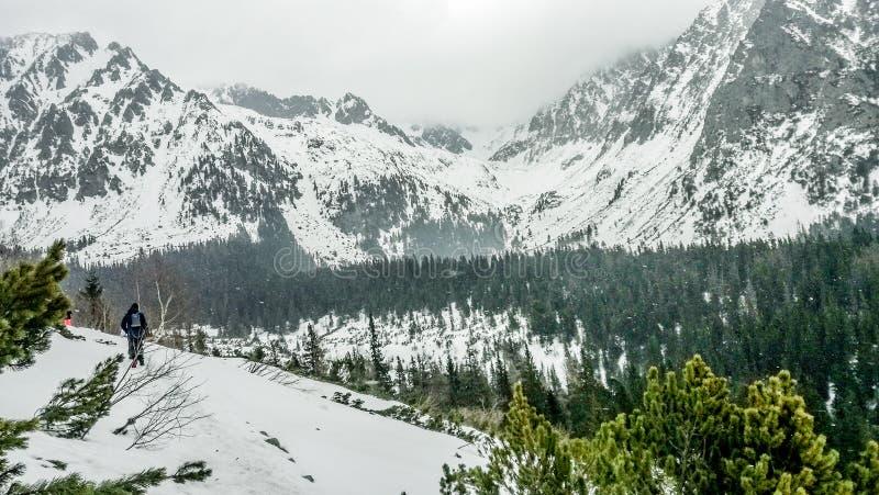 jour neigeux photos stock