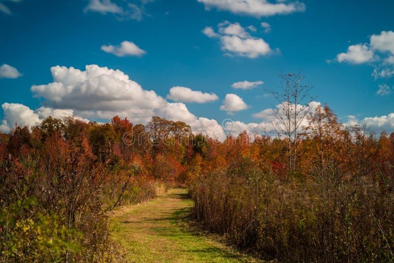 Jour nuageux d'automne photographie stock