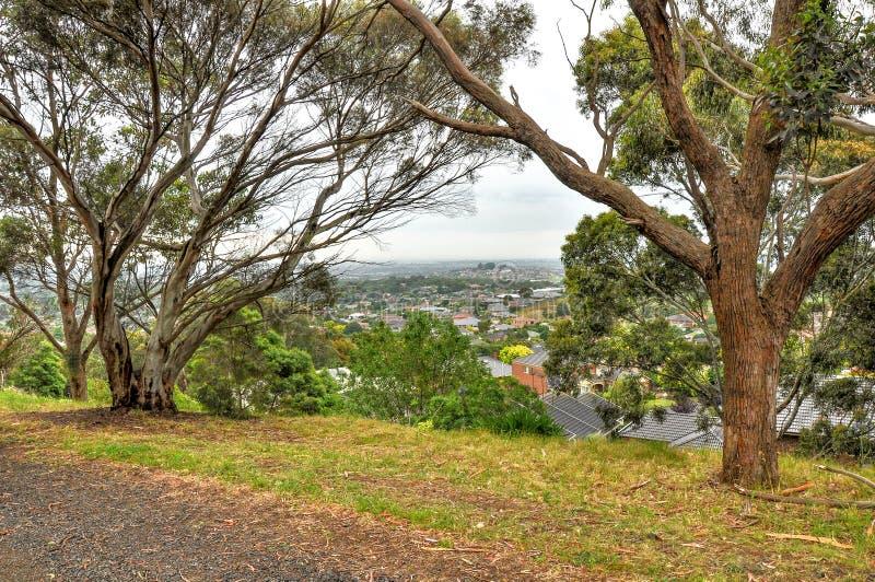 Jour pluvieux en parc Wilson l'australie images libres de droits