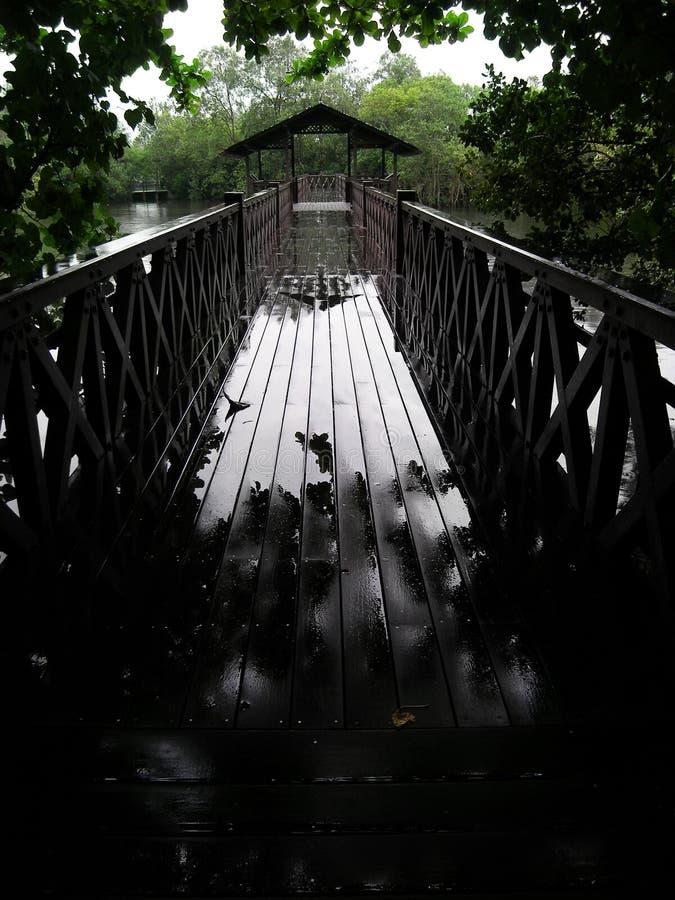 Jour pluvieux, promenade de réserve naturelle image stock