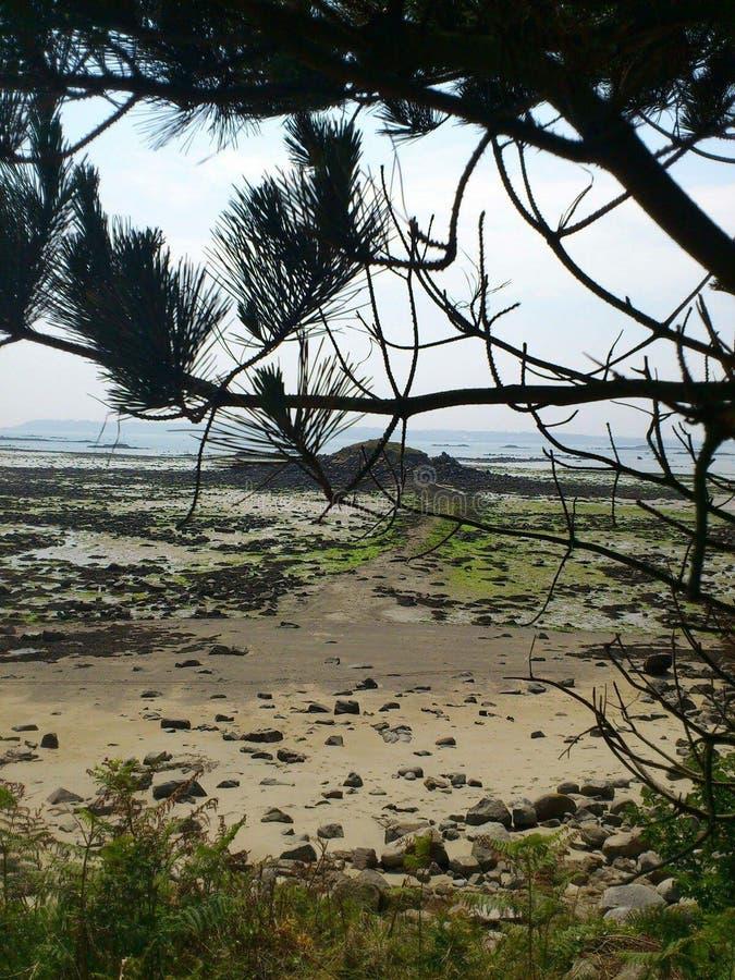 Jour sur l'île photo stock