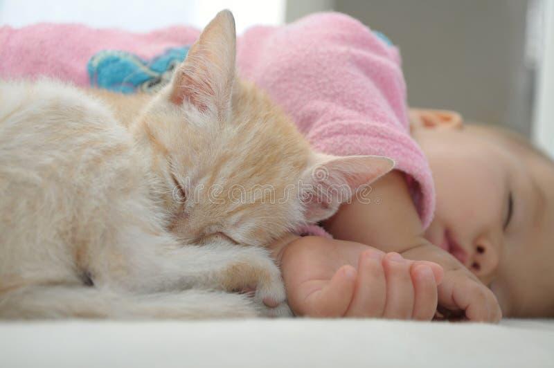 Journée de bébé et de chat dormant ensemble image stock