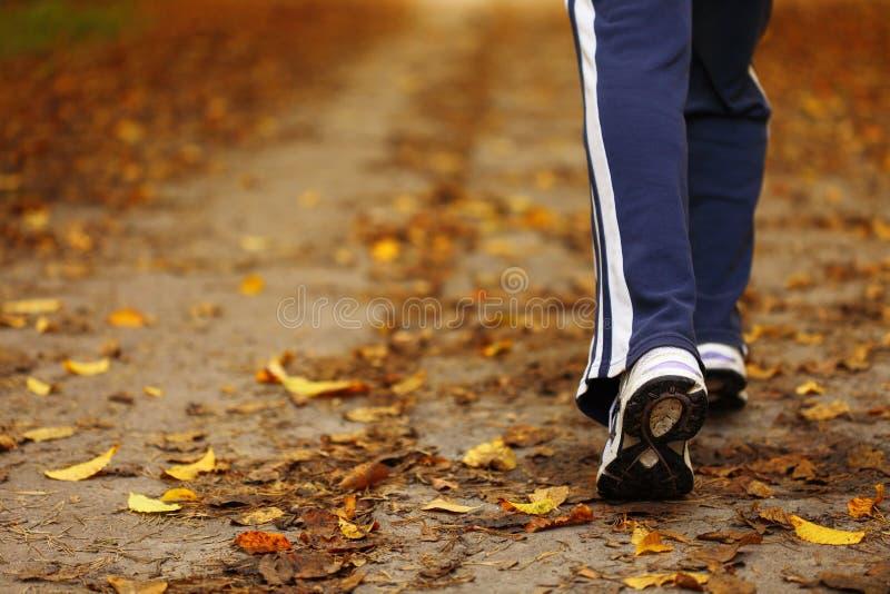 Journal de marche de pays en travers de femme dans la forêt d'automne photographie stock