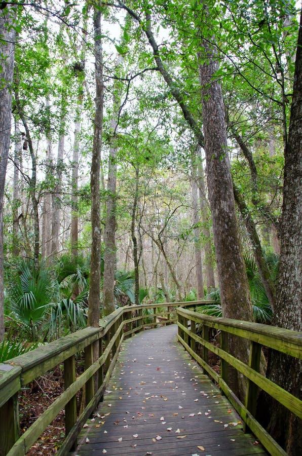 Journal de promenade de la Floride photos stock