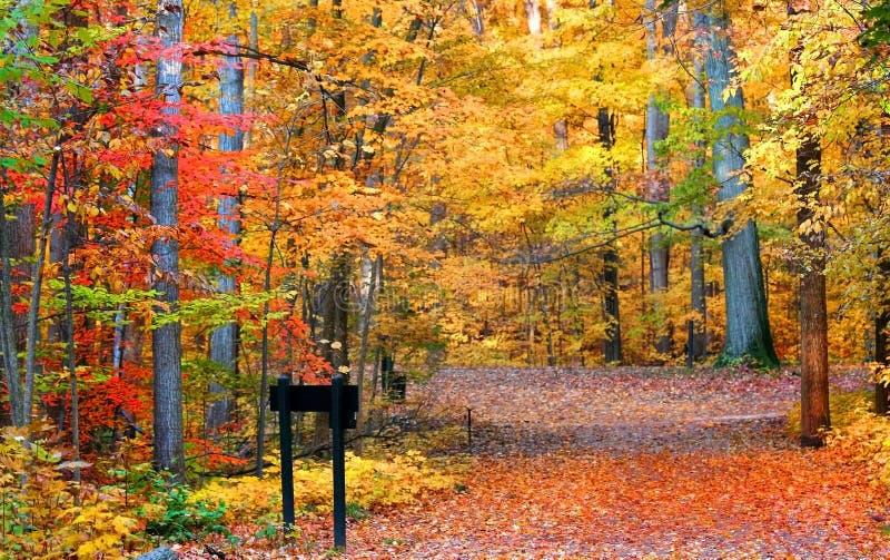 Journal de vélo d'automne photo stock
